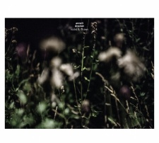 rcd2169-anneli-drecker-rocks-straws-cd-lp_19_2015-03-13-16-26-02