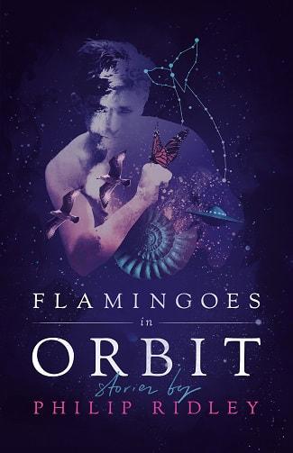 flamingoesinorbit_orig